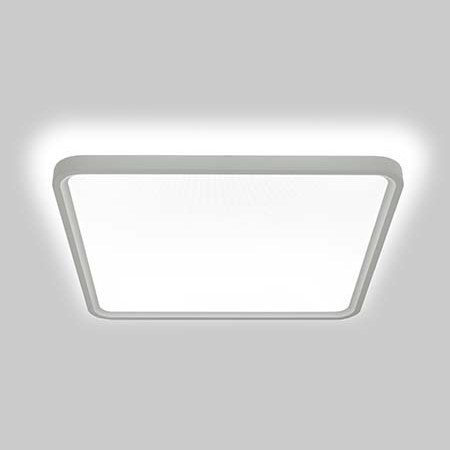 LED Lighting for Pet Stores, Pet Shops  Grooming Salons