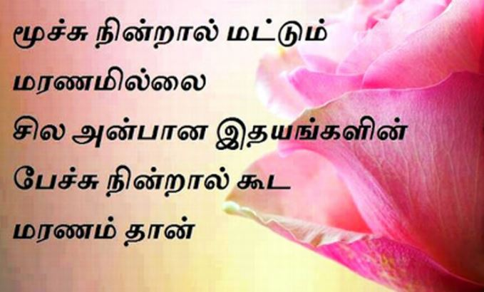 Good Morning Images Quotes Wallpapers For Whatsapp Top 100 New Whatsapp Status Images Tamil Download Hd Free