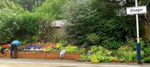 alsager-stations-garden community day