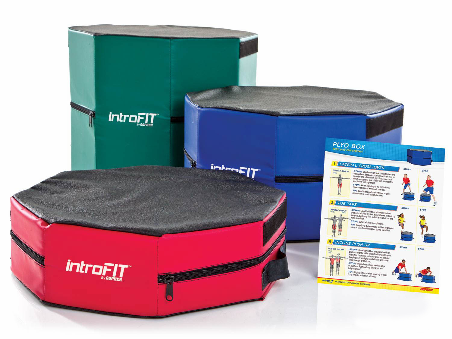 Introfit Plyo Box Gopher Sport