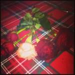 adelaide_de_martino_fiori