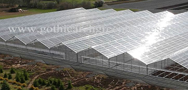 Commercial Greenhouses Top Quality Commercial Greenhouse