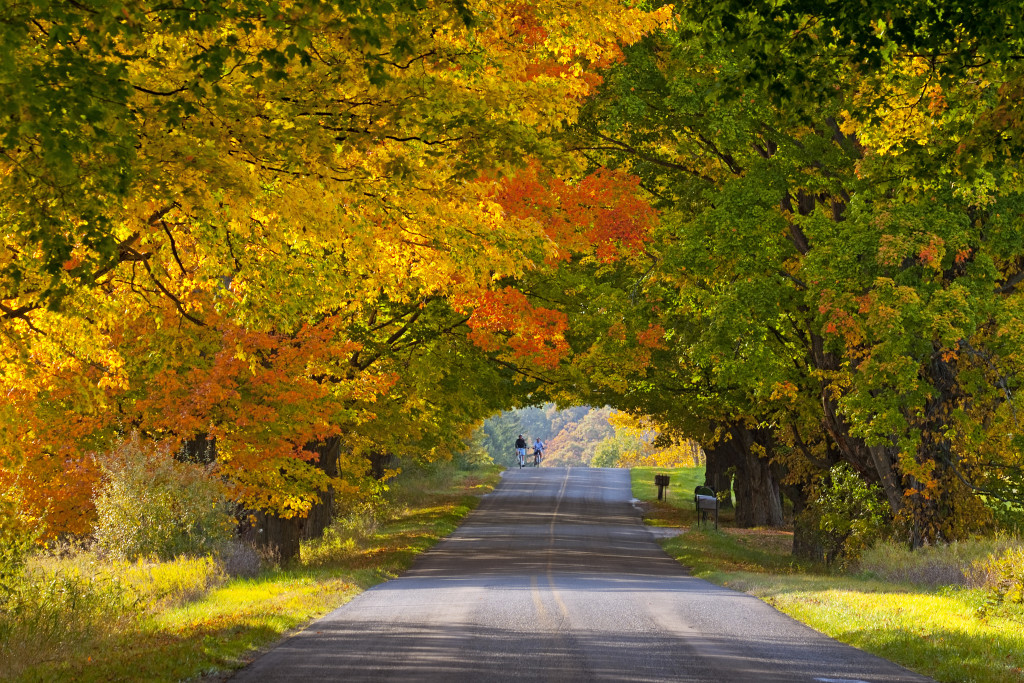 What Is Falling Action Of The Yellow Wallpaper Less Crowded Fall Foliage Destinations You Ve Never Thought Of