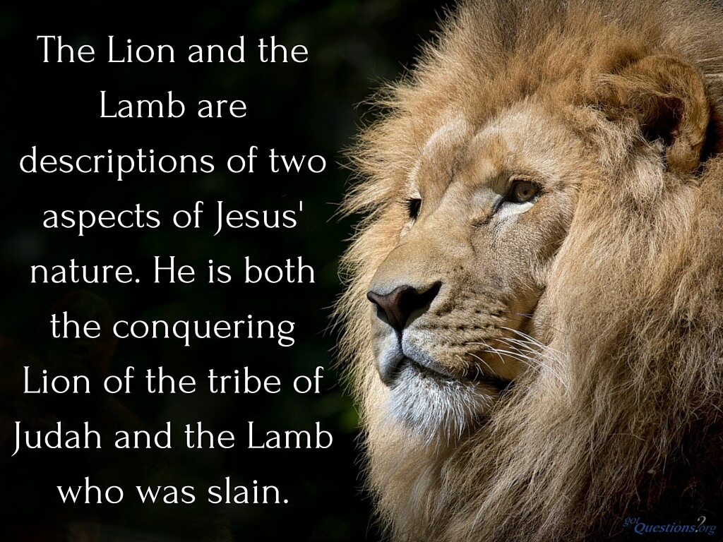 Kings Fall Wallpaper How Should We Understand The Lion And The Lamb Passage