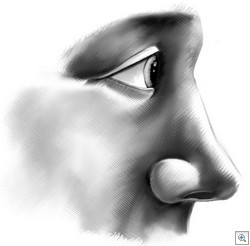 Nose__03x