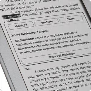 kindle dictionary look up