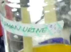Urine smartphone power