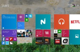 How To Stop Updates on Windows 8   (1)