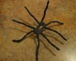 Breffo Spiderpodium Review - 01