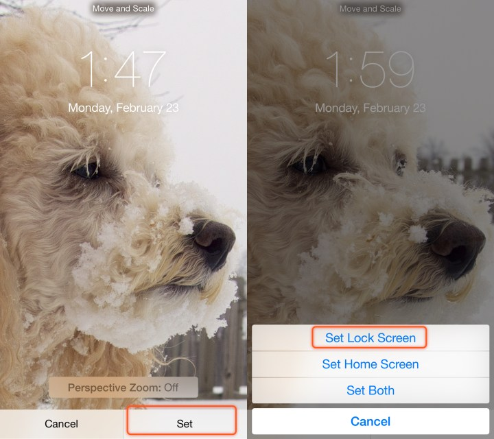 Set only the lock screen with your photo and you can keep a simpler background for your iPhone home screen.
