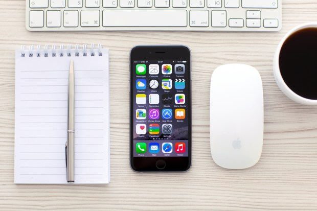Download the most important iPhone apps today. Denys Prykhodov / Shutterstock.com
