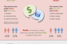 hulu Plus v. Netflix Infographic