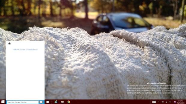 Windows 10 9901 (8)