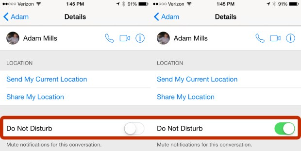Use the new iOS 8 iMessage feature to turn on Do Not Disturb for a single message thread.