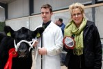 David wins Senior Stockman at National Calf Show 2013