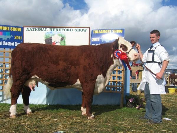 National Female Champion Tullamore 2011 IMG_7340