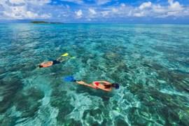 Kurumba Snorkeling_Safari