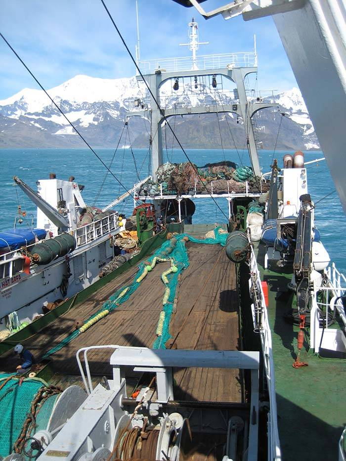 Nets prepared for catching fish around South Georgia. Photo BAS.