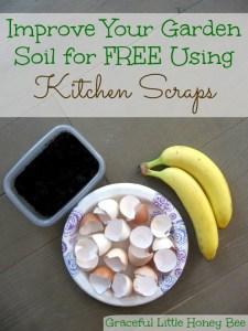 Improve your garden soil for free using kitchen scraps on gracefullittlehoneybee.com