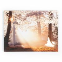 Metallic Forest Printed Canvas | Graham & Brown
