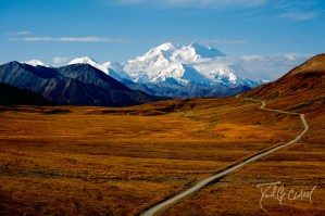 Into Denali National Park
