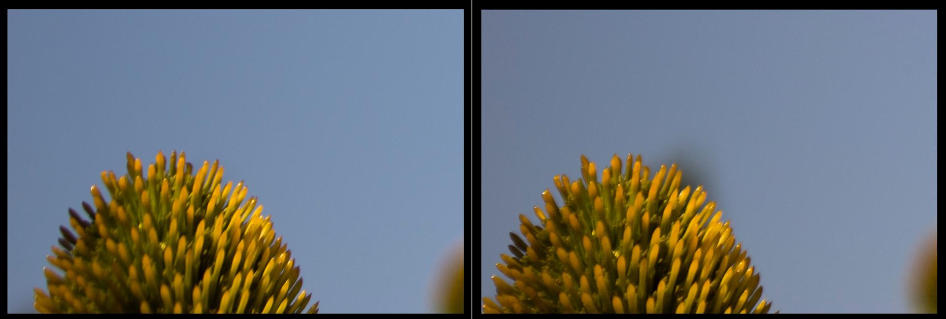 Canon 17-40mm F4 vs Canon 16-35mm F4 at 35mm F4 Corner Sharpness