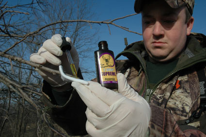 deer hunting scents