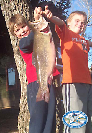 brook trout world record