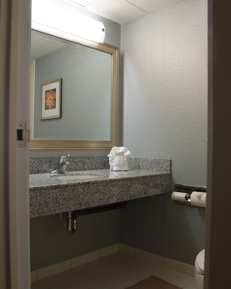 Compelling Undermount Sink Vanity S Need Granite Or Quartz Vanity S Your Next Commercial Quartz Vanity S Near Me Quartz Vanity S houzz-02 Quartz Vanity Tops