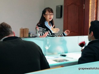Zhang Jing leads a tasting at Helan Qing Xue.