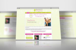 Baby Planner Services Website
