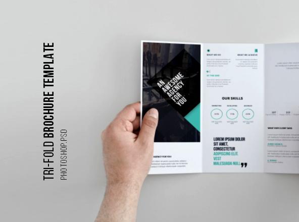 Tri-Fold Brochure Template