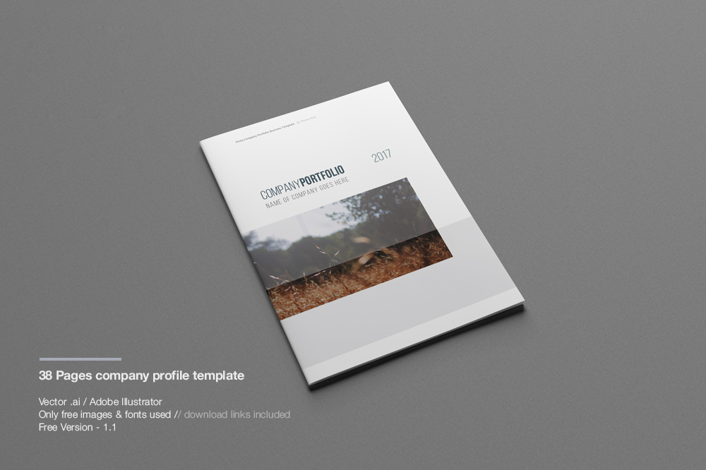 Company Profile Print Template - free profile templates