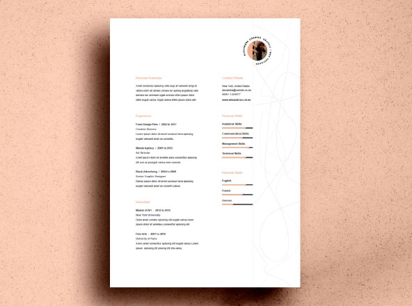 Premium  Free Professional Resume Templates - Free Professional Resume Template Downloads