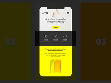 Mobile Application  Website Mockups