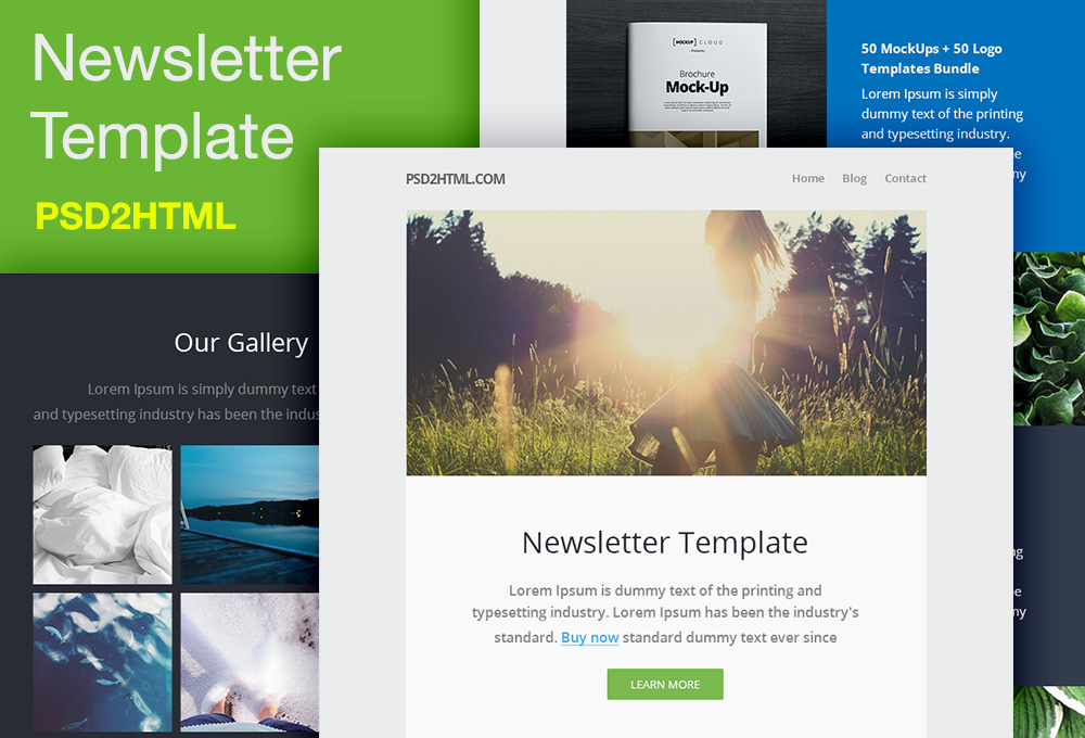 Free Newsletter Template (PSD  HTML) - GraphicsFuel - Newsletter Format