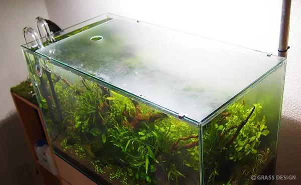 60cm水草水槽