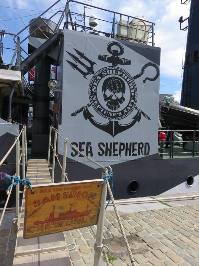 Sea Shepherd, Sam Simon in Antwerpen