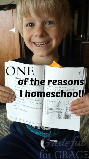 1 reason I homeschool