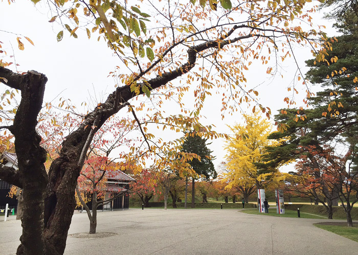 Goryokaku Park during autumn