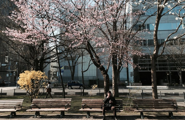 Man sitting on bench at Odori Park