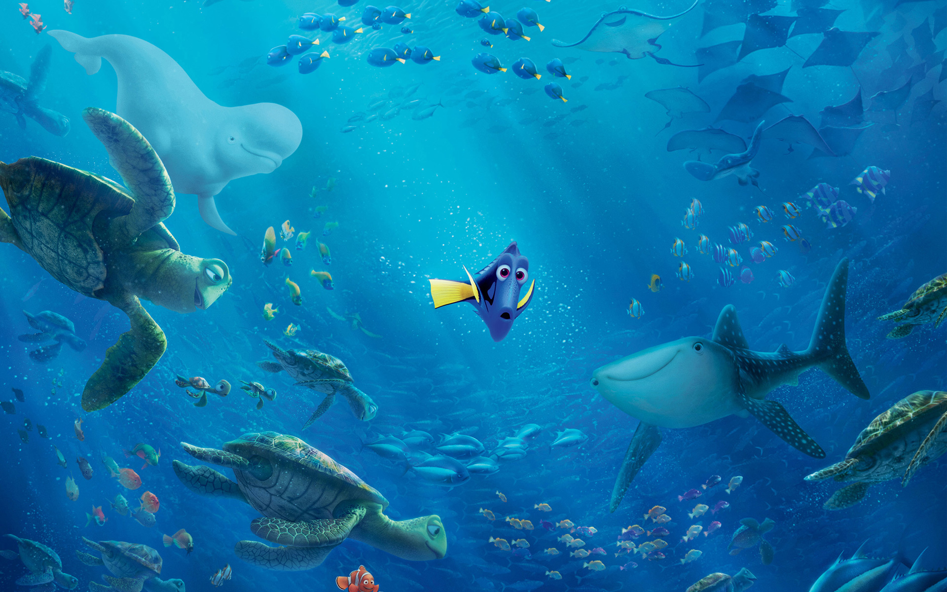 Haunted Mansion Iphone Wallpaper Buscando A Dory Wallpapers Finding Dory Disney Fondos Hd
