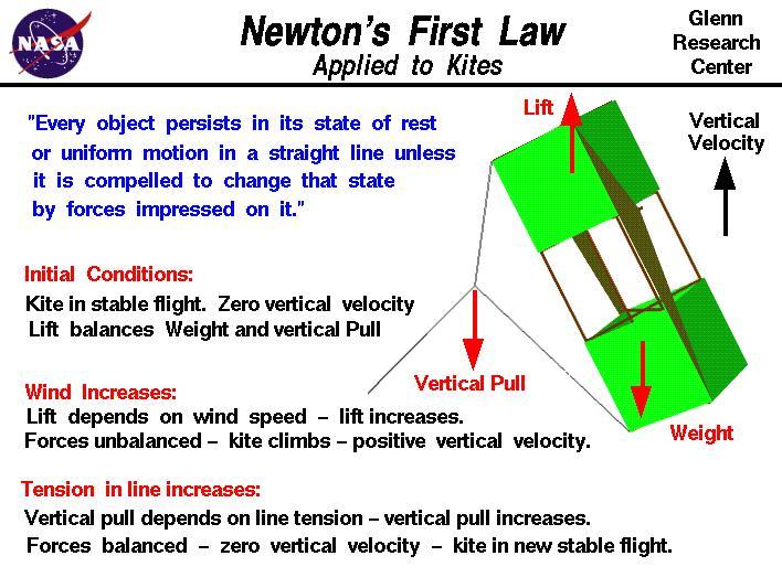 Newton\u0027s First Law Applied to a Kite