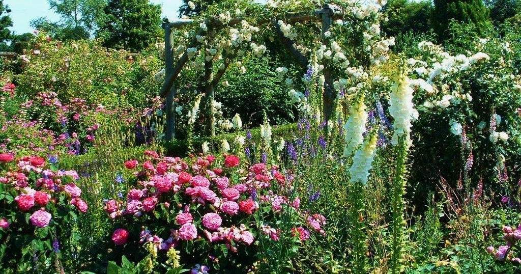 Roses And Rose Gardens And Where To See The Best Great