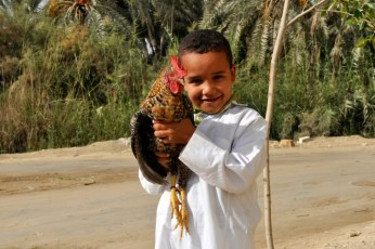 <strong>  Ahmed with Chicken </strong>