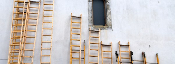 Step Ladders - the choice of professionals