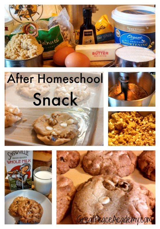 Not a Chocolate Cookie Recipe for an After School Snack | Great Peace Academy