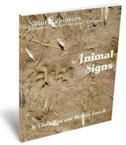 Animal Signs 3D Cover 3
