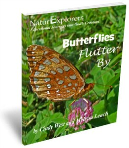 Butterflies Flutter By 3D Cover 2