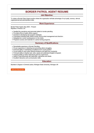 sample resume career objective examples